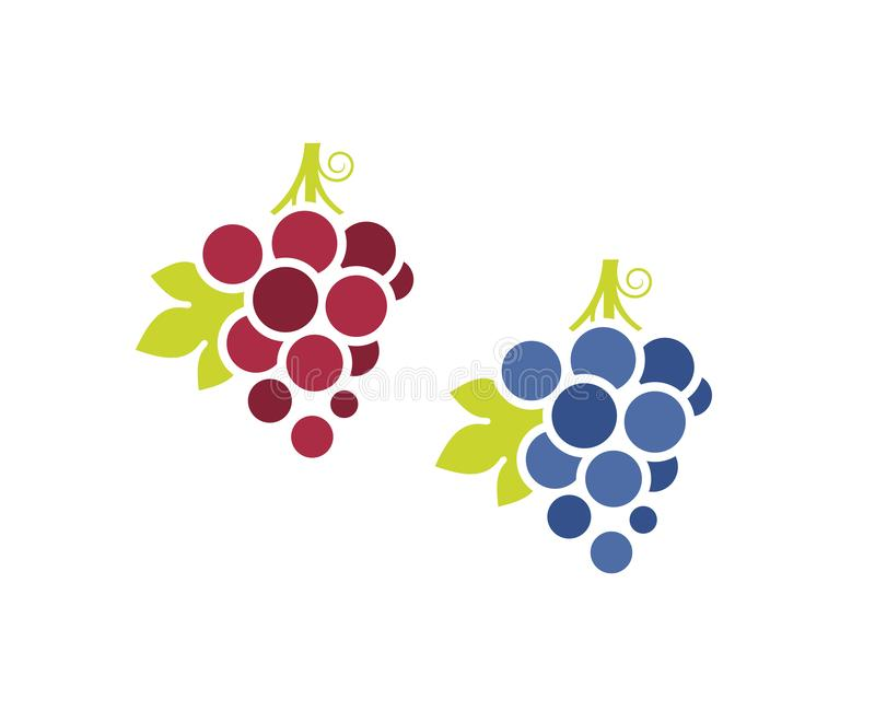 Uvas vermelhas e uvas azuis Grupo do ?cone Fruto fresco com as folhas no fundo branco ilustração royalty free