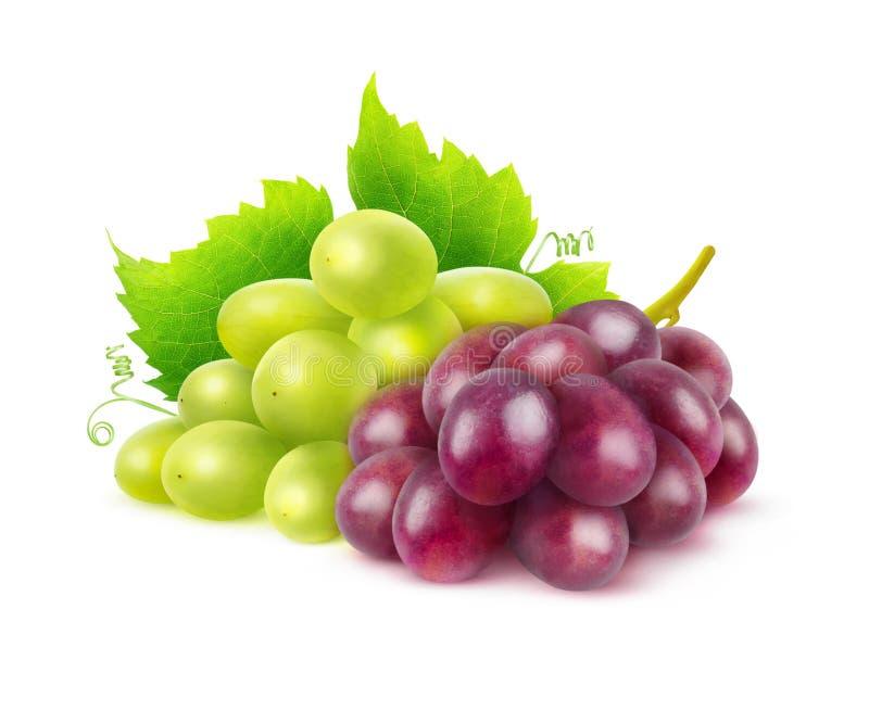 Uvas vermelhas e brancas isoladas imagens de stock