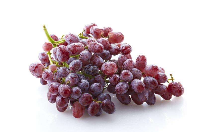 Uvas vermelhas frescas, sem sementes fotografia de stock royalty free