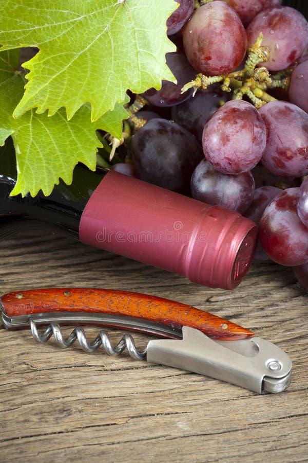 Uvas y botella de vino imagen de archivo
