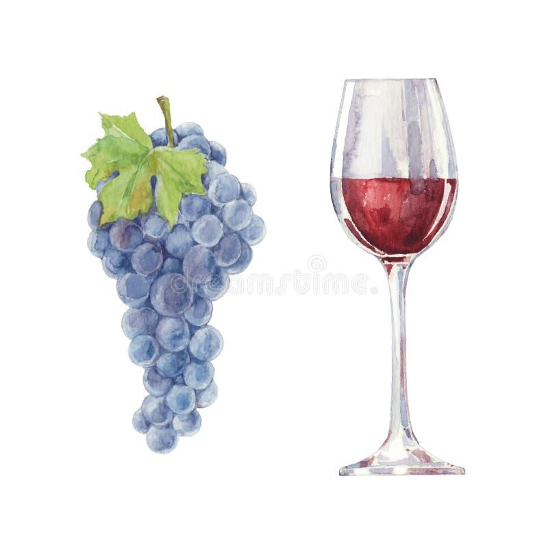 Uvas y vino rojo en un vidrio aislado en un fondo blanco V imagenes de archivo