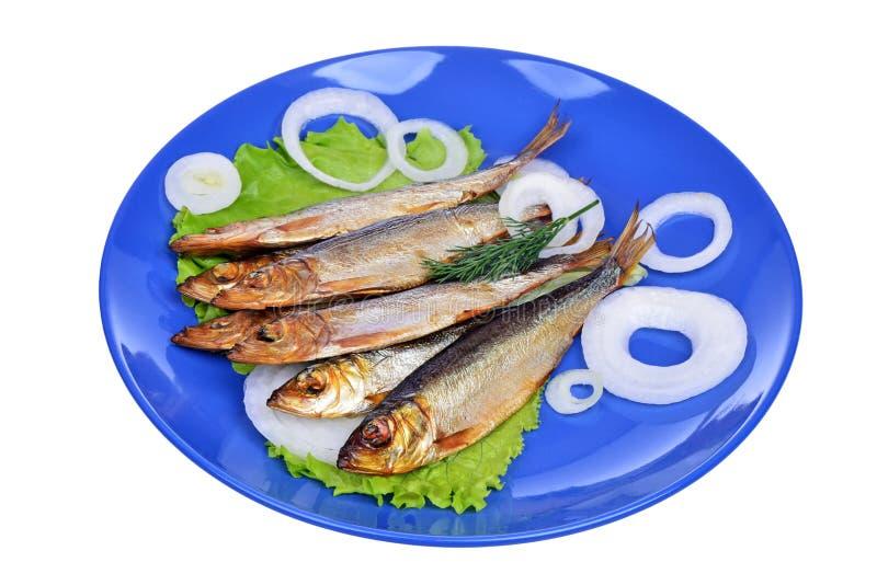 Uwędzona ryba i sałatka na błękitnym talerzu odizolowywającym obraz royalty free