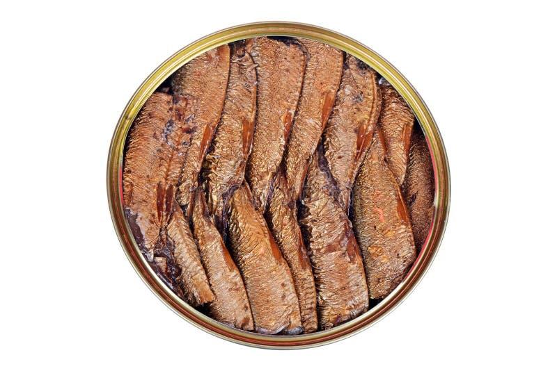 Uwędzona ryba z oliwa z oliwek w otwartej blaszanej puszce na bielu fotografia royalty free