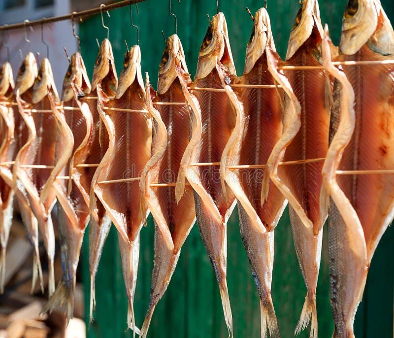 Uwędzona, wysuszona omul ryba w Baikal jeziorze/ Rybi obwieszenie w karmowym rynku Listvianka na brzeg jeziorny Bailkal Siberia,  zdjęcie stock