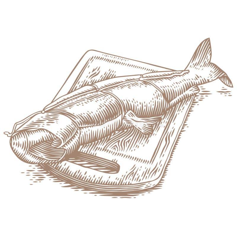 Uwędzony humpback łosoś royalty ilustracja