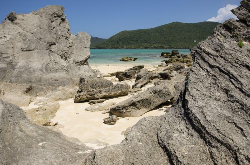 Uwarstwiony calcarenite przy laguny plaży władyki Howe wyspą zdjęcia stock