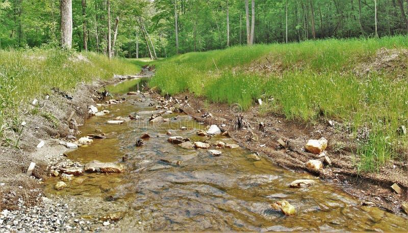 Uwharrie Nationaal Bos royalty-vrije stock afbeeldingen