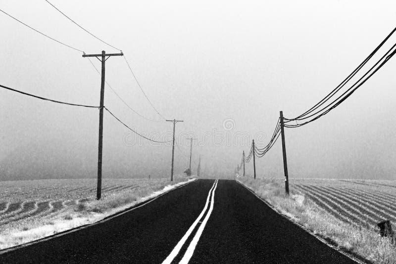 Uwydatniający B&W jezdni jeżdżenie w mgłę fotografia stock