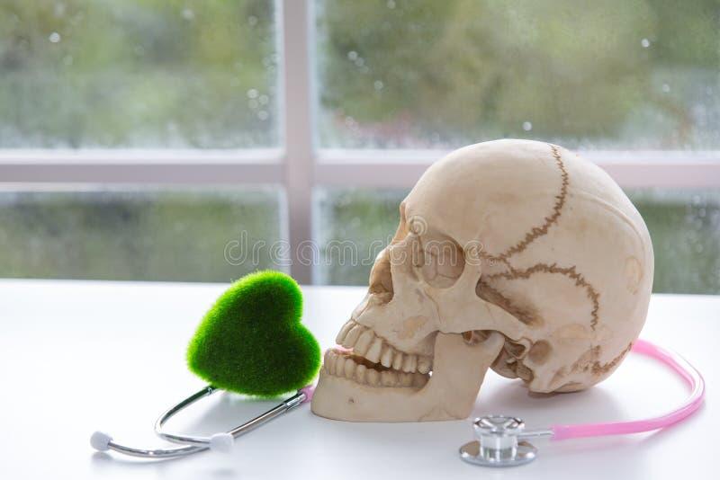 Uzależnienie Szkodliwy nałogu leka ostrości strzykawka Czaszka i stetoskop stetoskop i zieleni serce Naukowa eksperyment z lekami obraz royalty free