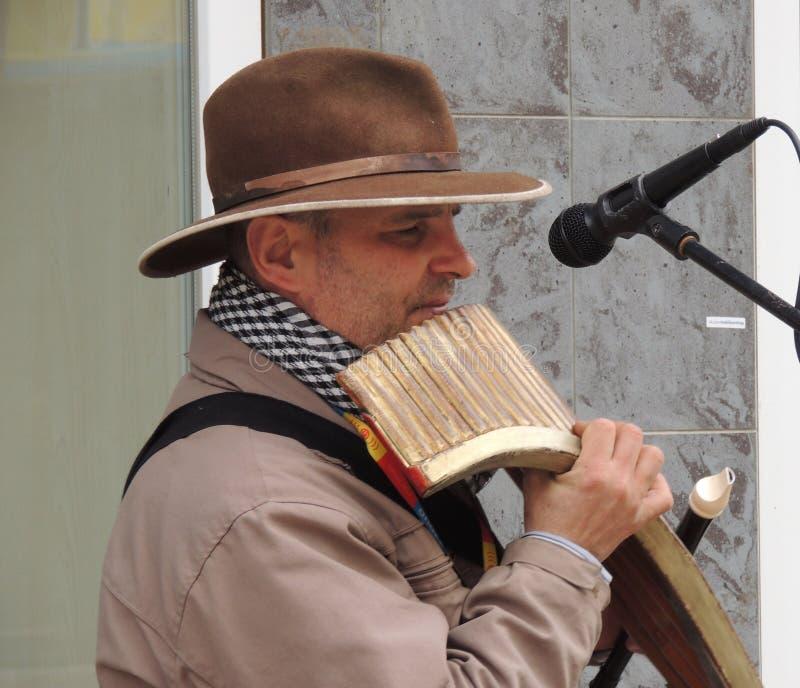 Uzhgorod Musicista della via fotografie stock