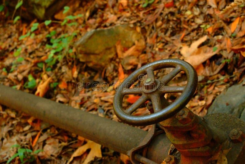 Download Válvula Da Roda Na Tubulação De água Nas Madeiras Imagem de Stock - Imagem de interruptor, volta: 527021