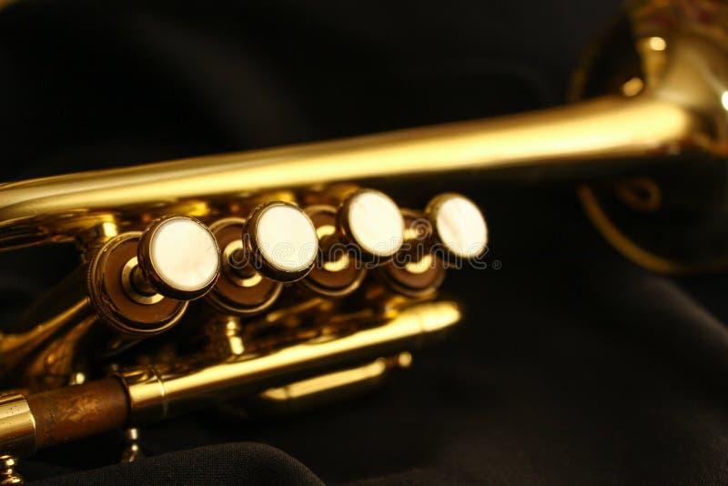 Válvulas de flautín de la trompeta fotos de archivo libres de regalías
