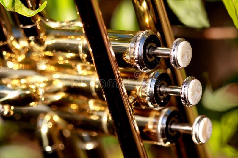 Válvulas de la perla de una trompeta imagenes de archivo