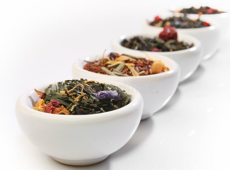 Várias bacias de folhas de chá superiores imagens de stock royalty free