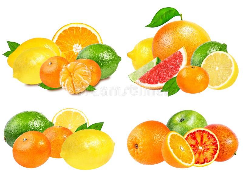 Várias citrinas sobre o branco imagem de stock