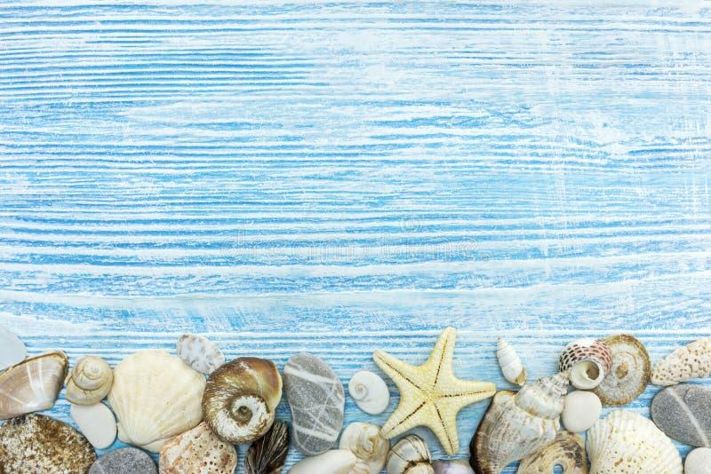 Várias conchas do mar, pedras marinhas, estrela do mar em placas de madeira imagens de stock royalty free