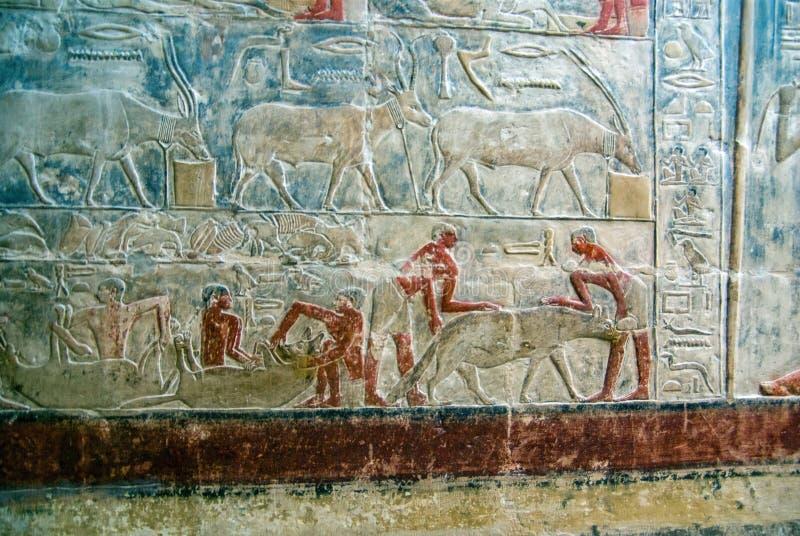 Várias fotos do turista de lugares famosos no Cairo Egito fotos de stock