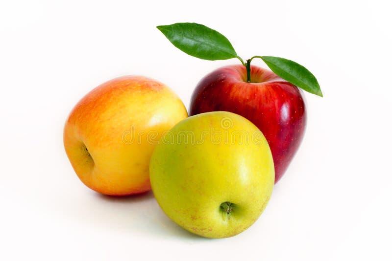 Várias maçãs isoladas no fundo branco imagens de stock royalty free