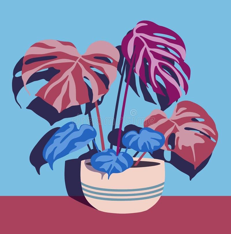 Várias plantas internas no único potenciômetro na parede azul ilustração do vetor