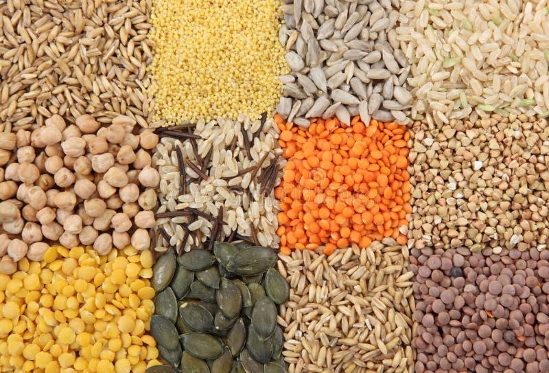 Várias sementes e grões foto de stock royalty free