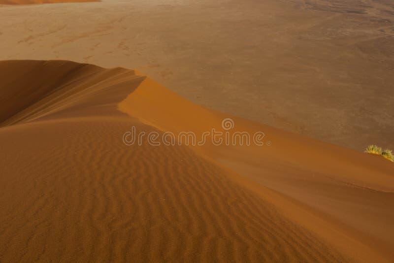 Várias vistas da duna 45 no deserto de Namib imagens de stock royalty free
