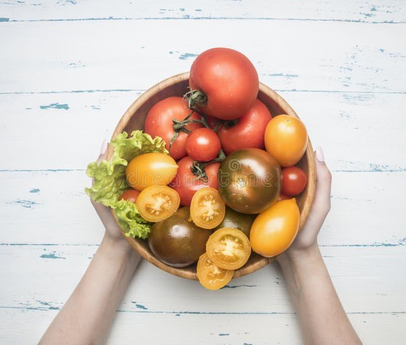 Vário colorido de variedades diferentes dos vegetais orgânicos da exploração agrícola dos tomates, legumes frescos na bacia de ma imagens de stock royalty free
