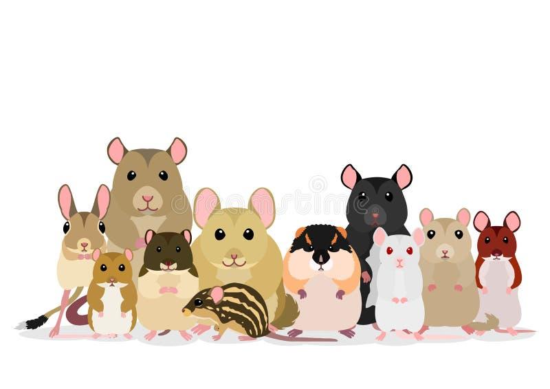 Vário grupo dos ratos e dos ratos das raças ilustração royalty free
