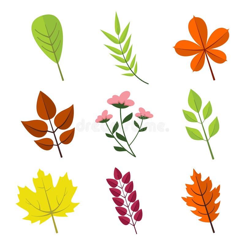 Vário grupo floral simples do gráfico da ilustração do vetor das folhas ilustração royalty free
