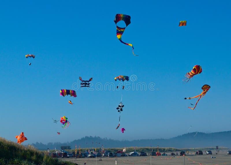Vário voo colorido dos papagaios foto de stock royalty free