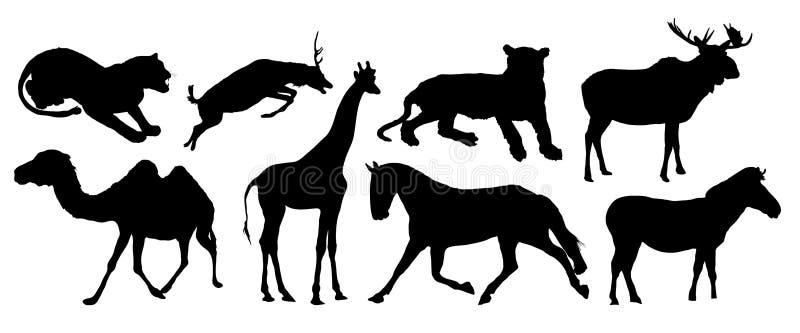 Vários animais imagem de stock