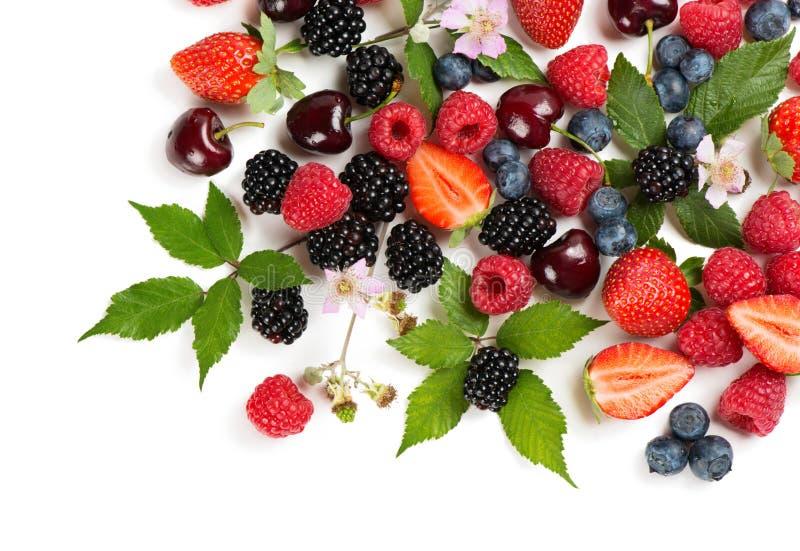 Vários bagas e frutos do verão, acima da vista fotografia de stock royalty free