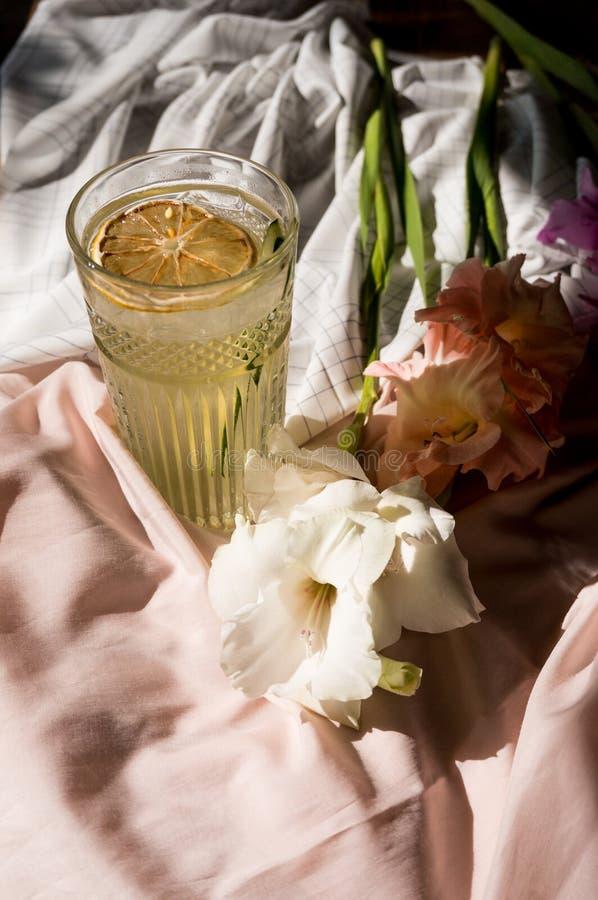 Vários cocktail alcoólicos Bebida fria com cal e gelo frescos imagem de stock