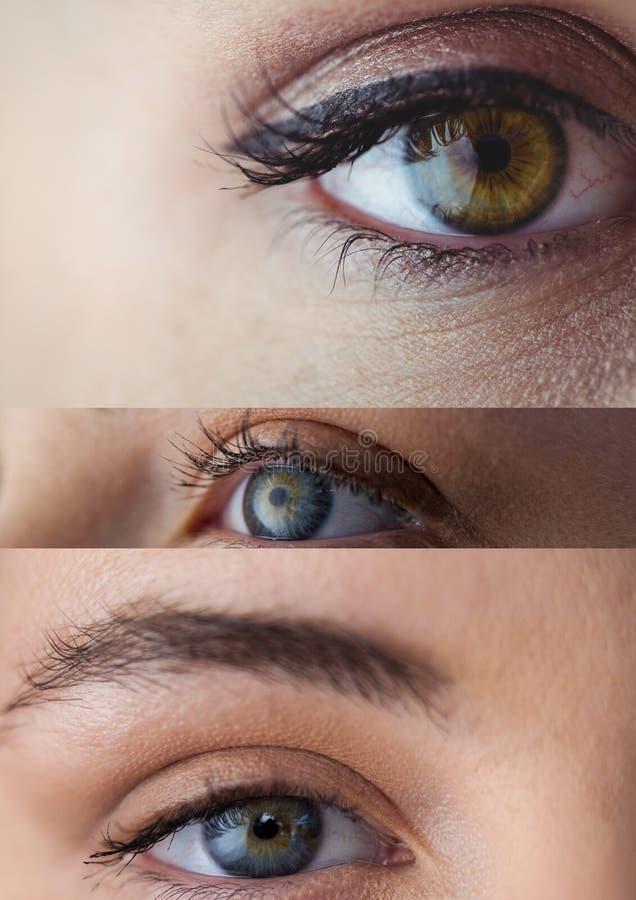 Vários olhos em série de três ilustração do vetor