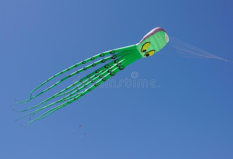 Vários papagaios coloridos que voam em um céu azul brilhante imagem de stock royalty free