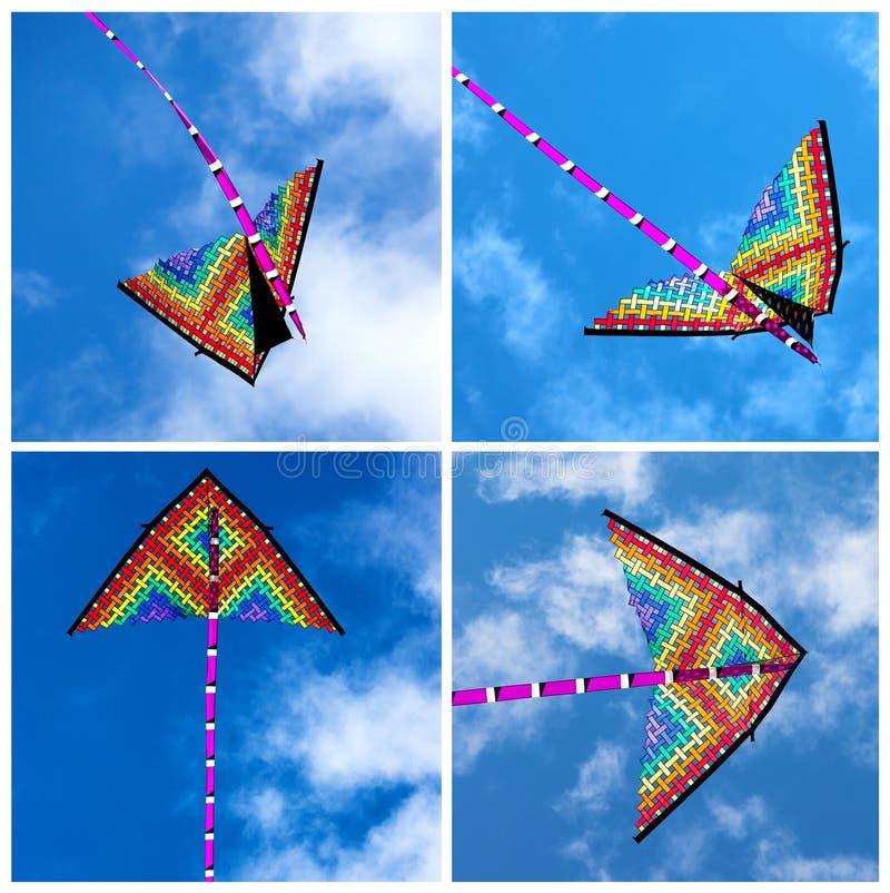 Vários papagaios coloridos que voam em um céu azul brilhante foto de stock