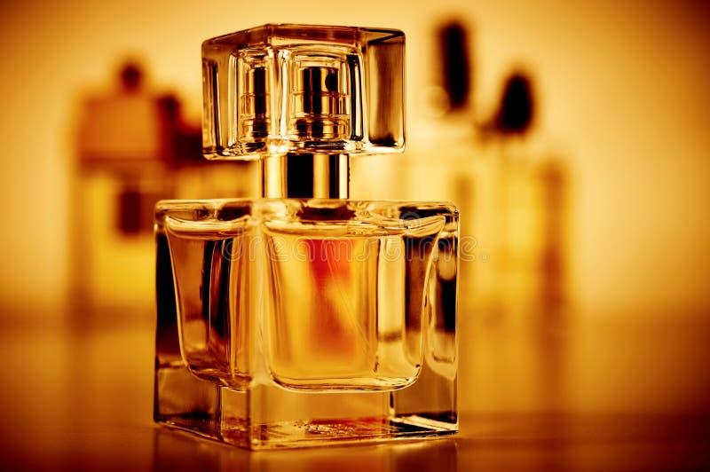Vários perfumes ajustados imagem de stock royalty free