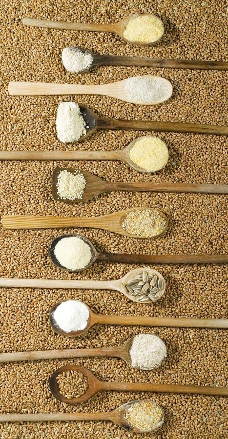 Vários tipos de farinha imagens de stock