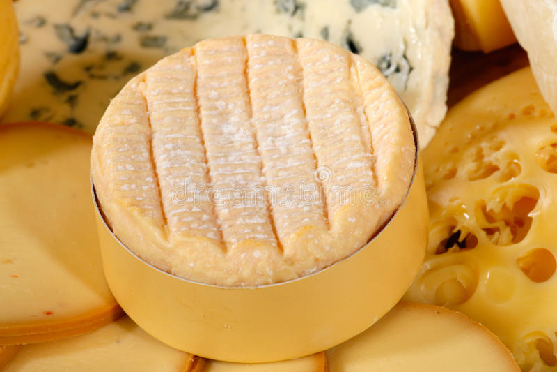 Vários tipos de queijo delicioso foto de stock