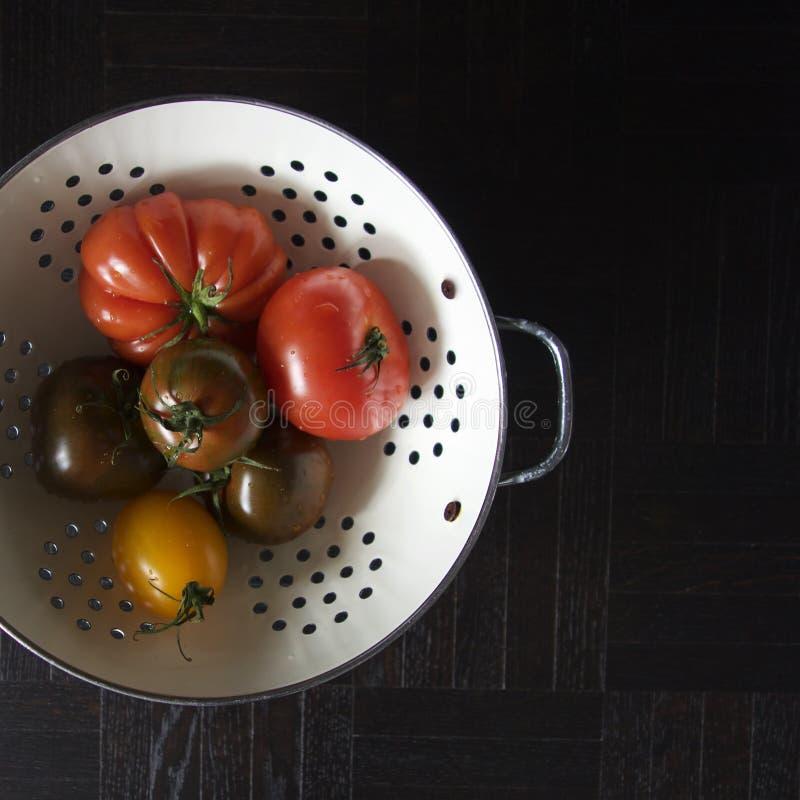 Vários tomates fotografia de stock