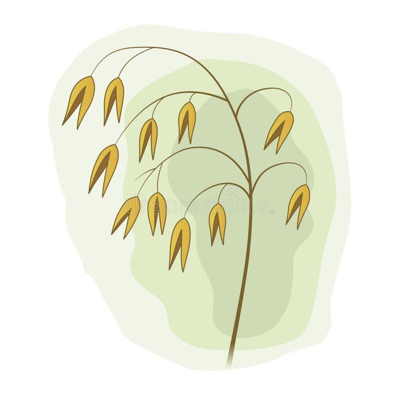Vástago de la hierba de prado con los gérmenes amarillos stock de ilustración