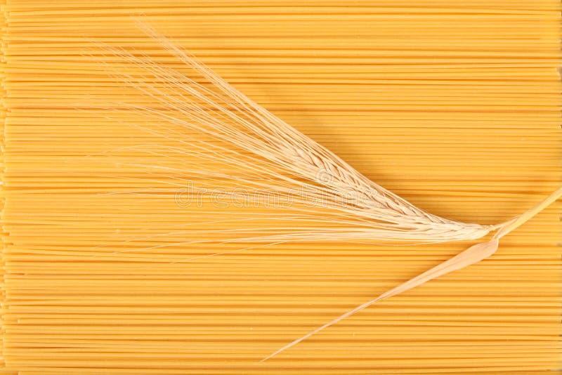 Tronco de los espaguetis y del trigo.