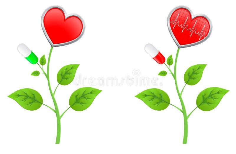 Vástago verde con las hojas con un corazón rojo ilustración del vector