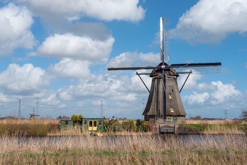 Väderkvarn i Kinderdijk nära Rotterdam Nederländerna arkivbild