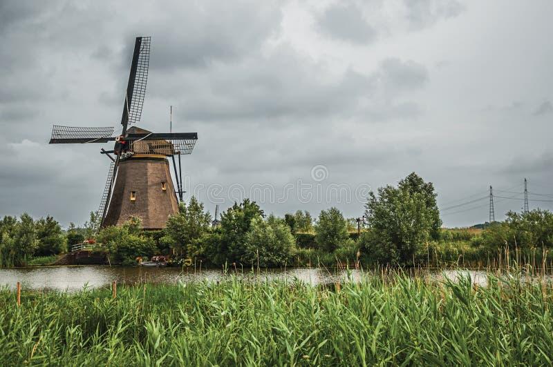 Väderkvarn och högväxta buskar på banken av en stor kanal i en molnig dag på Kinderdijk royaltyfri foto