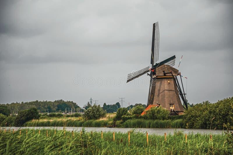 Väderkvarn och högväxta buskar på banken av en stor kanal i en molnig dag på Kinderdijk arkivfoto