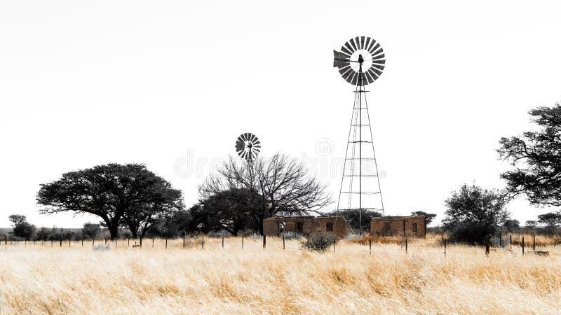 Väderkvarn och lantligt landskap royaltyfria foton