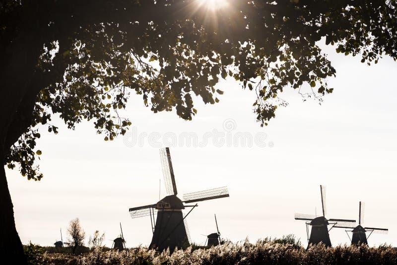 Väderkvarn på Kinderdijk, Nederländerna arkivfoto