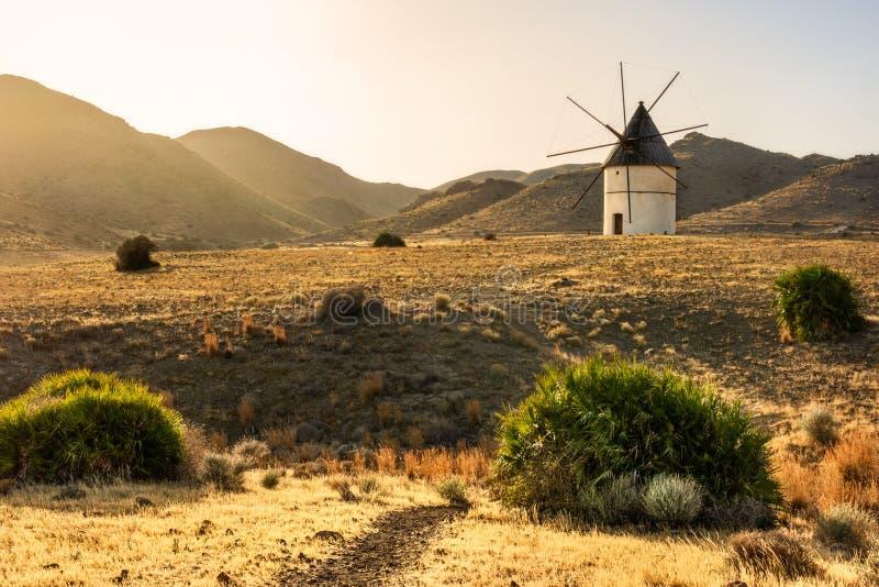 Väderkvarn på solnedgången mellan kullarna Ljusa och guld- fält i sydliga Spanien arkivbilder