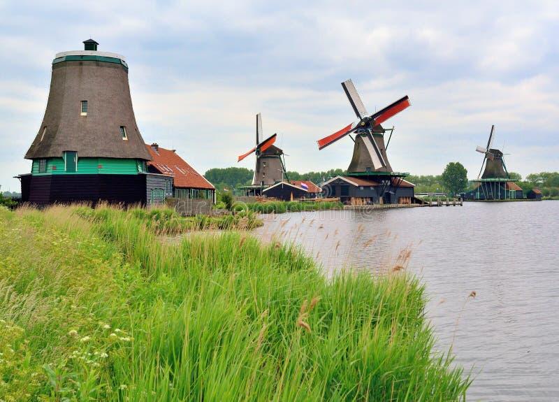 Väderkvarnar av Holland royaltyfria bilder