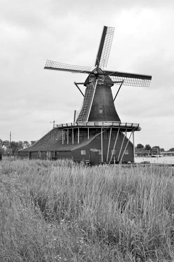 Väderkvarnar av Nederländerna royaltyfria bilder